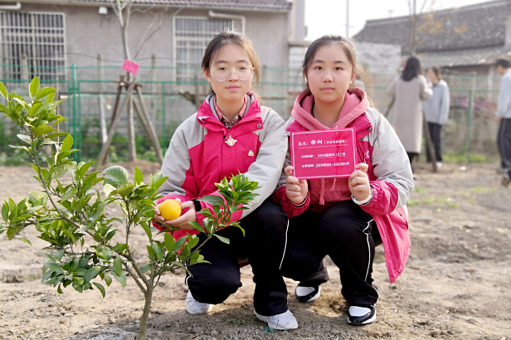 曙光中学2020届师生开展冬日植树活动