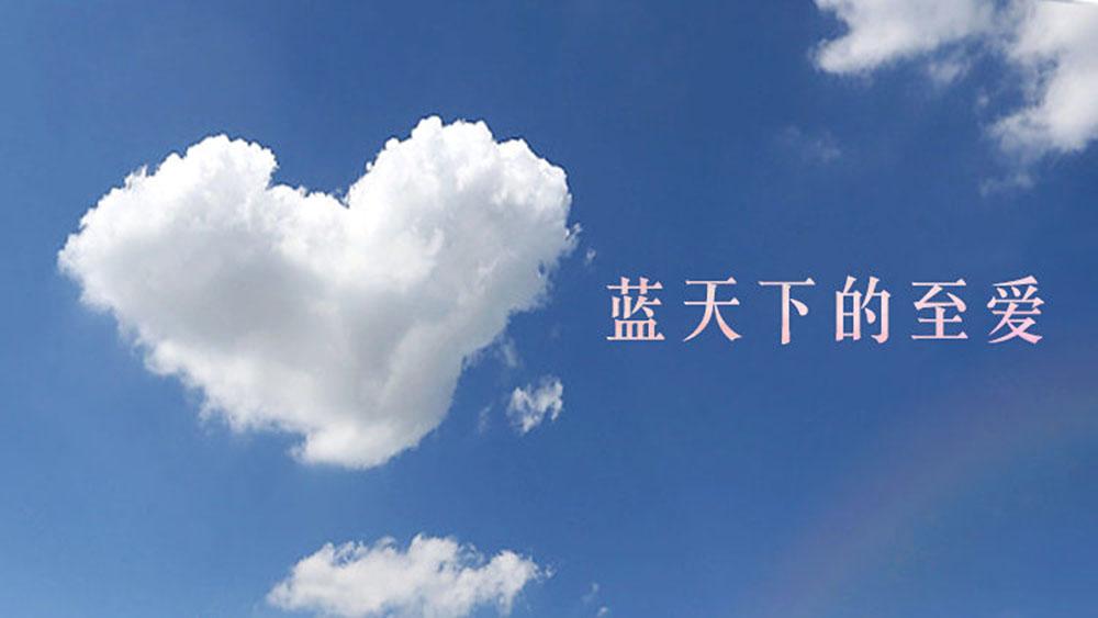 """曙光中学第二十六届""""蓝天下的至爱""""系列慈善活动拉开序幕"""