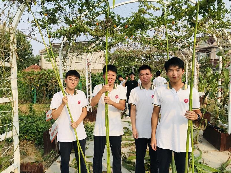曙光中学:收获的季节,丰收的喜悦