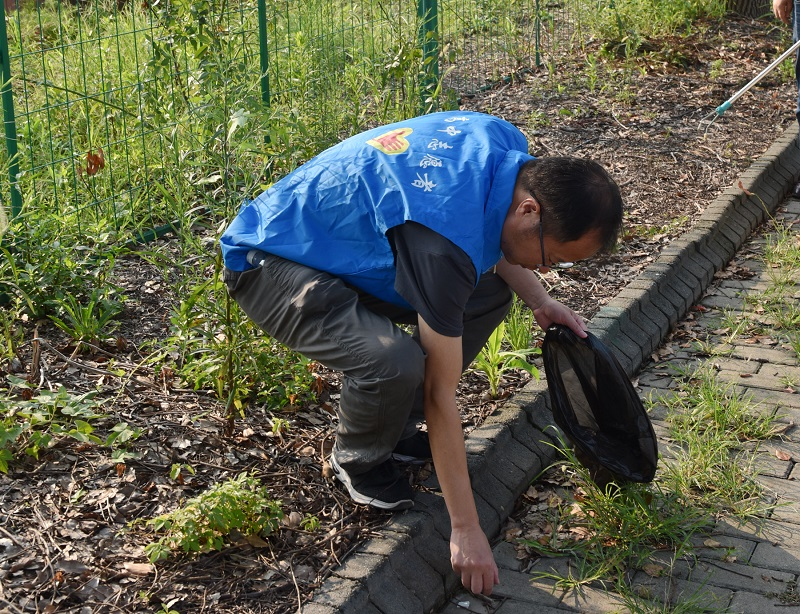 曙光中学:党员志愿行动,助力文明创建